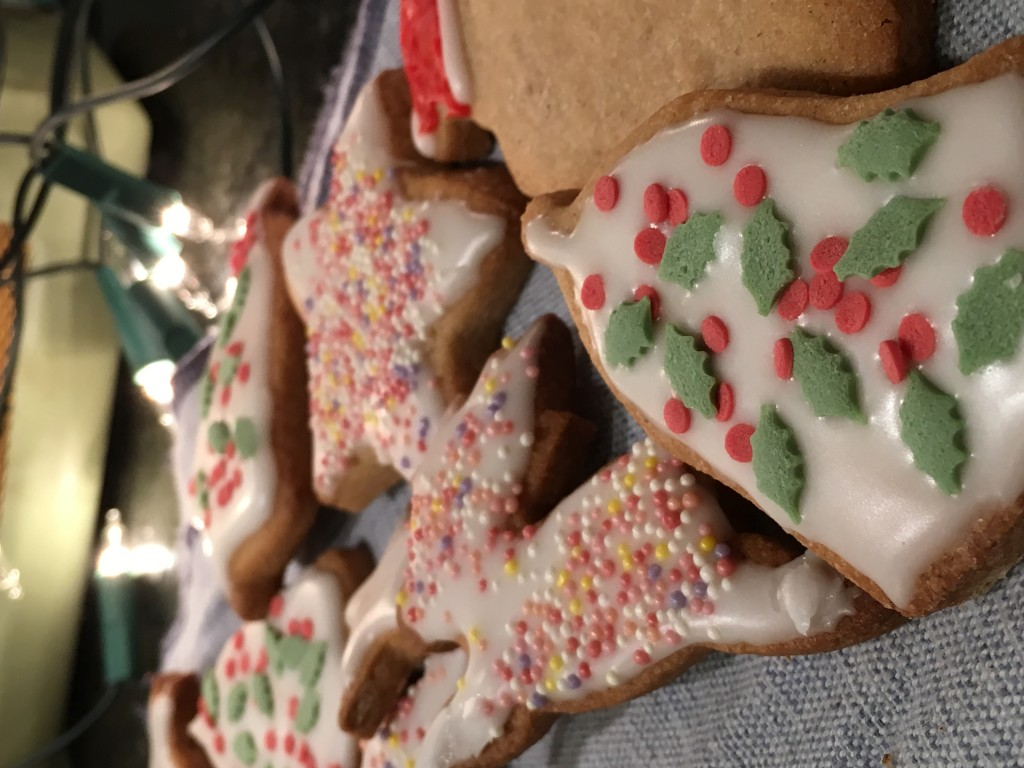 Christmas Sugar Biscuits