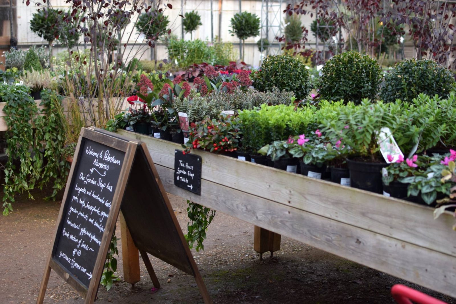 Petersham Nurseries // London
