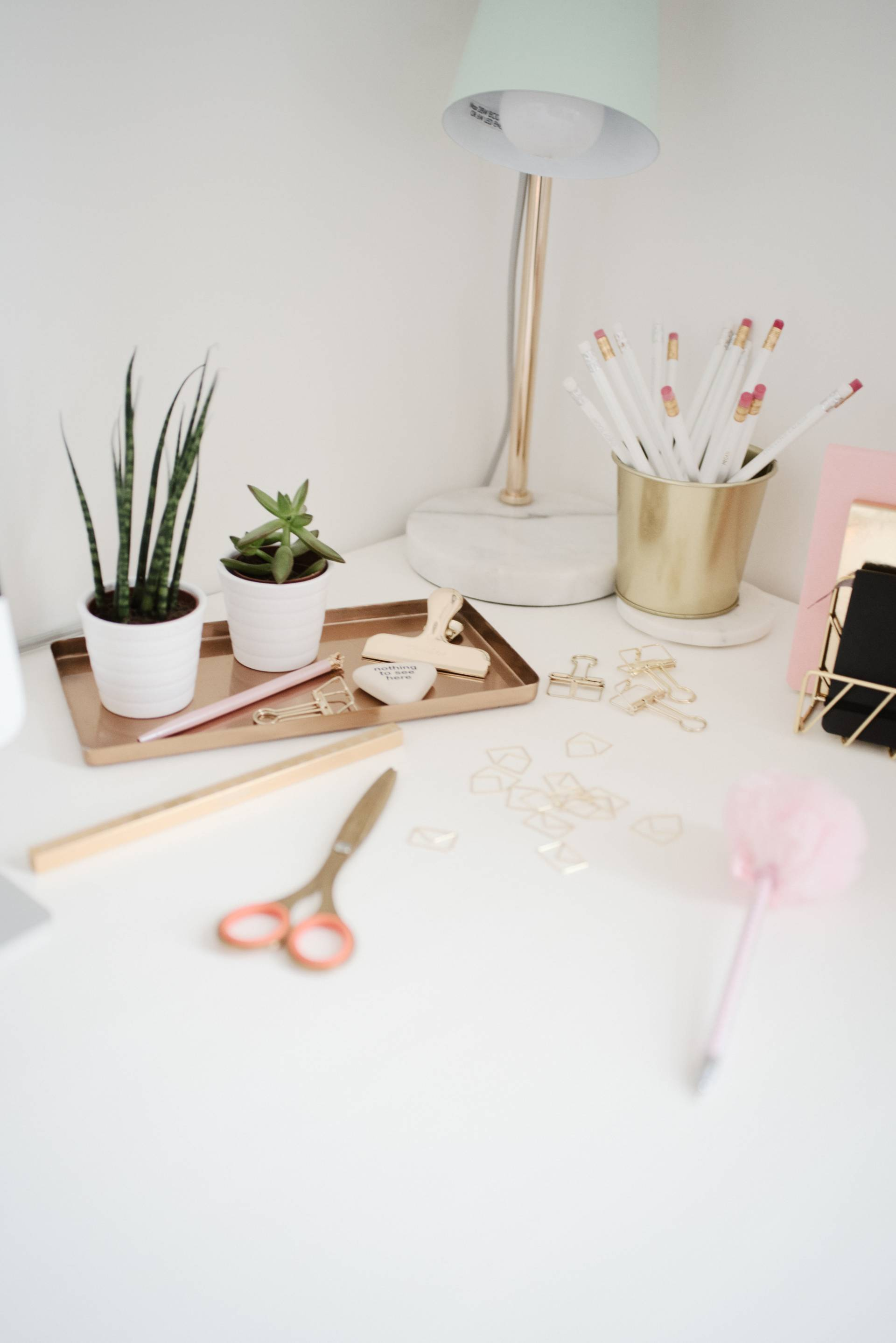 5 TOP TIPS TO SUCCESSFULLY WORKING FROM HOME | Megan Taylor