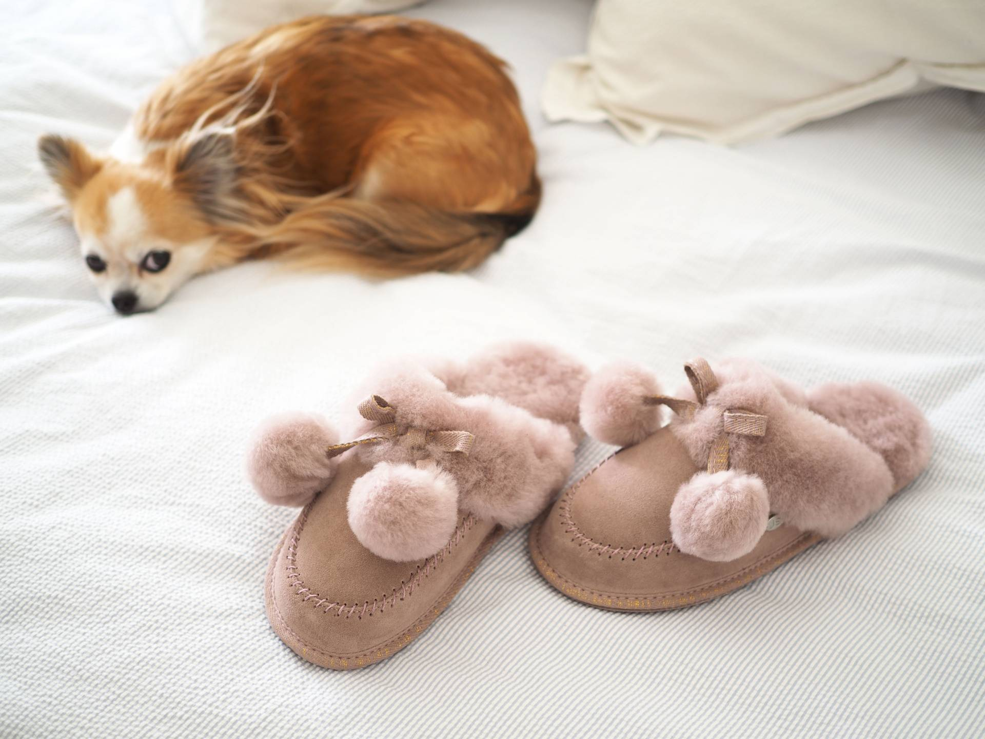 MOTHER'S DAY GIFT GUIDE | MEGAN TAYLOR | SHEEPSKIN SLIPPERS